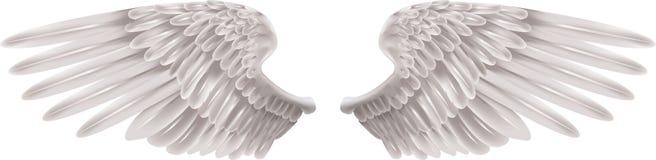 άσπρα φτερά Στοκ Φωτογραφίες