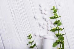 Άσπρα χάπια με βοτανικό Στοκ Εικόνες