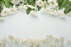 Άσπρα χρυσάνθεμα σε ένα ξύλινο υπόβαθρο, τοπ άποψη, με το κενό διάστημα για το γράψιμο ή τη διαφήμιση στοκ εικόνα