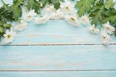 Άσπρα χρυσάνθεμα σε ένα ξύλινο υπόβαθρο, τοπ άποψη, με το κενό διάστημα για το γράψιμο ή τη διαφήμιση στοκ εικόνες