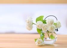 Άσπρα jasmine λουλούδια σε ένα γυαλί Όμορφο jasmine λουλούδι Στοκ Εικόνα