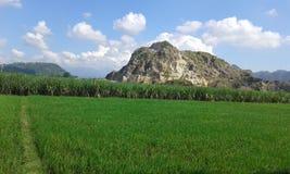 Άσπρα portugis benteng βουνών της Ινδονησίας Jepara Στοκ φωτογραφία με δικαίωμα ελεύθερης χρήσης