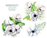 Άσπρες ανθοδέσμες λουλουδιών anemone Watercolor Στοκ Εικόνες