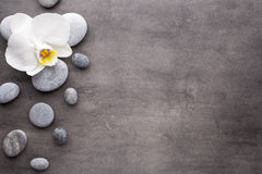 Άσπρες πέτρες ορχιδεών και SPA στο γκρίζο υπόβαθρο Στοκ Εικόνες