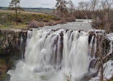 Άσπρες πτώσεις ποταμών στην άνοιξη Στοκ Εικόνες