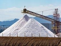 Άσπρες πυραμίδες με τις φυσικές αλατισμένες, αλατισμένες εργασίες θάλασσας για το εργοστάσιο πλησίον Στοκ φωτογραφίες με δικαίωμα ελεύθερης χρήσης