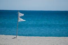 Άσπρες σημαίες σε μια παραλία της Φλώριδας Στοκ φωτογραφία με δικαίωμα ελεύθερης χρήσης