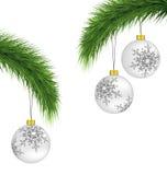 Άσπρες σφαίρες Χριστουγέννων στους κλάδους πεύκων που απομονώνονται στο λευκό διανυσματική απεικόνιση