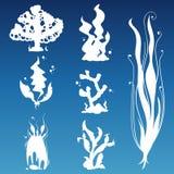 Άσπρες υποβρύχιες σκιαγραφίες άγριων εγκαταστάσεων διανυσματική απεικόνιση