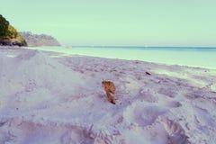 Άσπρη άμμος, θάλασσα και σαφής ουρανός Στοκ Εικόνες