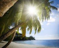 Άσπρη άμμος παραλιών κοραλλιών και κυανός Ινδικός Ωκεανός. Στοκ Εικόνες