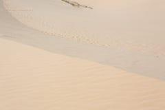 Άσπρη έρημος αμμόλοφων άμμου στο ΝΕ Mui, Βιετνάμ Στοκ εικόνες με δικαίωμα ελεύθερης χρήσης