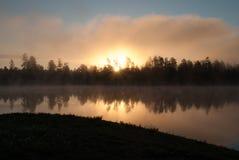 Άσπρη λίμνη Campgrounds, Ουίλιαμς, AZ αλόγων Στοκ Φωτογραφίες