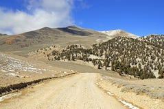 Άσπρη αιχμή βουνών, Καλιφόρνια στοκ εικόνα με δικαίωμα ελεύθερης χρήσης