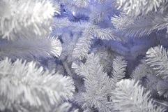 Άσπρη ανασκόπηση Χριστουγέννων δέντρων χιονιού Στοκ φωτογραφία με δικαίωμα ελεύθερης χρήσης