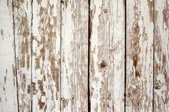 Άσπρη αποφλοίωση χρωμάτων από τον ξύλινο τοίχο Στοκ φωτογραφίες με δικαίωμα ελεύθερης χρήσης