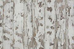 Άσπρη αποφλοίωση χρωμάτων από τον ξύλινο τοίχο grunge Στοκ φωτογραφίες με δικαίωμα ελεύθερης χρήσης