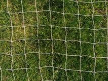 Άσπρη αλιεία με δίχτυα ενάντια στην πράσινη χλόη στοκ εικόνες