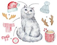 Άσπρη γάτα Χριστουγέννων διανυσματική απεικόνιση