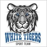 Άσπρη επικεφαλής, διανυσματική απεικόνιση τιγρών απεικόνιση αποθεμάτων