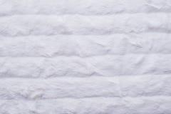 Άσπρη διοχετευμένη γούνα Στοκ Εικόνες