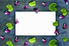 Άσπρη κάρτα σε ένα σχέδιο των ρόδινων λουλουδιών και στρογγυλά πράσινα φύλλα σε ένα γκρίζο ηλικίας κατασκευασμένο ξύλινο υπόβαθρο Στοκ Εικόνες
