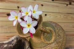 Άσπρη και ρόδινη δέσμη plumeria λουλουδιών στο μεγάλο παλαιό ψημένο τρύγος CL Στοκ φωτογραφία με δικαίωμα ελεύθερης χρήσης