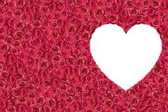 Άσπρη καρδιά που περιβάλλεται από τα τριαντάφυλλα 2 Στοκ εικόνα με δικαίωμα ελεύθερης χρήσης
