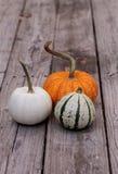 Άσπρη κολοκύθα Casper δίπλα σε μια πορτοκαλιά κολοκύθα και μια πράσινη και άσπρη κολοκύθα Στοκ Εικόνα