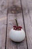 Άσπρη κολοκύθα Casper με τα κόκκινα μούρα Στοκ Φωτογραφία