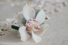 Άσπρη μικρή ανθοδέσμη μπουτονιέρων ορχιδεών για buttonhole που χρησιμοποιείται για το νεόνυμφο και τους γαμήλιους φιλοξενουμένους στοκ φωτογραφίες