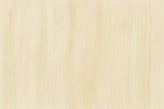 Άσπρη ξύλινη σύσταση Στοκ Εικόνες
