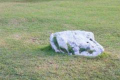 Άσπρη πέτρα Στοκ Φωτογραφίες