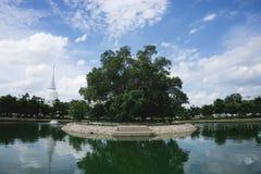 Άσπρη παγόδα σε Wat Phra Sri Rattana Mahathat & x28 Wat Yai& x29  από το bangk Στοκ Φωτογραφία
