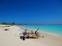 Άσπρη παραλία στην Κούβα Στοκ Φωτογραφίες