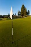 Άσπρη σημαία με μια γδυμένη καρφίτσα στο γκολφ πράσινο Στοκ εικόνες με δικαίωμα ελεύθερης χρήσης