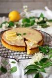 Άσπρη σοκολάτα κέικ polenta λεμονιών elderflower ganache στοκ εικόνες