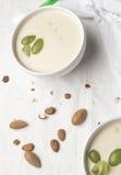 Άσπρη σούπα σκόρδου Στοκ Εικόνες