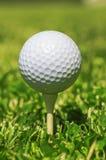 Άσπρη σφαίρα γκολφ Στοκ φωτογραφία με δικαίωμα ελεύθερης χρήσης