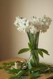 Άσπρη σύνθεση Daffodil Στοκ εικόνες με δικαίωμα ελεύθερης χρήσης