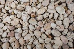 Άσπρη σύσταση πετρών Στοκ εικόνα με δικαίωμα ελεύθερης χρήσης