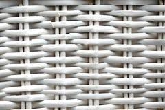 Άσπρη λυγαριά Στοκ φωτογραφία με δικαίωμα ελεύθερης χρήσης
