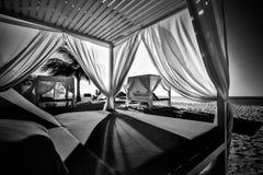Άσπροι θόλοι παραλιών Σκηνές παραλιών πολυτέλειας στο τροπικό θέρετρο, τις πολυτελείς διακοπές και την έννοια τ διακοπών στοκ φωτογραφία με δικαίωμα ελεύθερης χρήσης