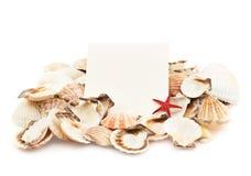 Άσπροι κάρτα και σωρός θαλασσινών κοχυλιών Στοκ εικόνες με δικαίωμα ελεύθερης χρήσης