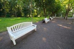 Άσπροι πάγκοι σε έναν θερινό κήπο Στοκ Εικόνες