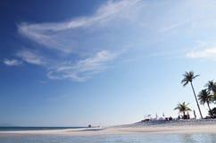 Άσπροι παραλία και φοίνικες Στοκ φωτογραφίες με δικαίωμα ελεύθερης χρήσης
