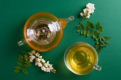 Άσπροι τσάι ακακιών και κλάδοι ακακιών στοκ φωτογραφία με δικαίωμα ελεύθερης χρήσης