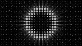 Άσπροι φακοί στροβοσκόπιων που και που αναβοσβήνουν στο μαύρο υπόβαθρο, άνευ ραφής βρόχος : Τοίχος των επικέντρων, μονοχρωματικός διανυσματική απεικόνιση