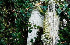 Άσπρος άγγελος Στοκ Φωτογραφίες