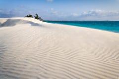 Άσπρος αμμόλοφος άμμου Στοκ Εικόνες